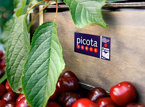 Picota Cherries
